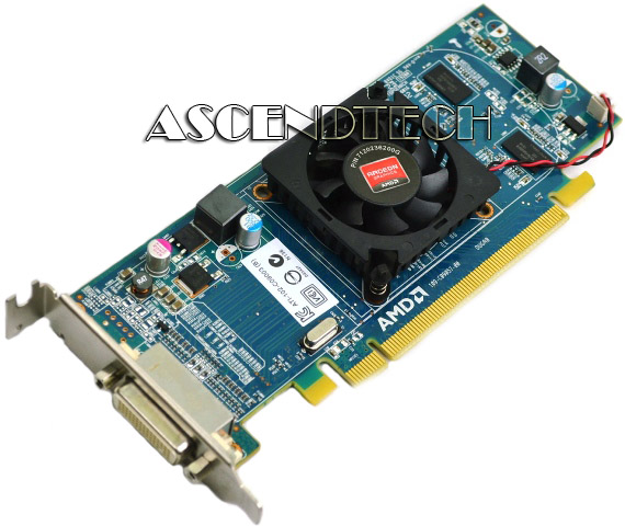 E-G Dell Video Graphics Card