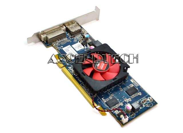 Dell Amd Ati Radeon HD6450 1GB 3173K