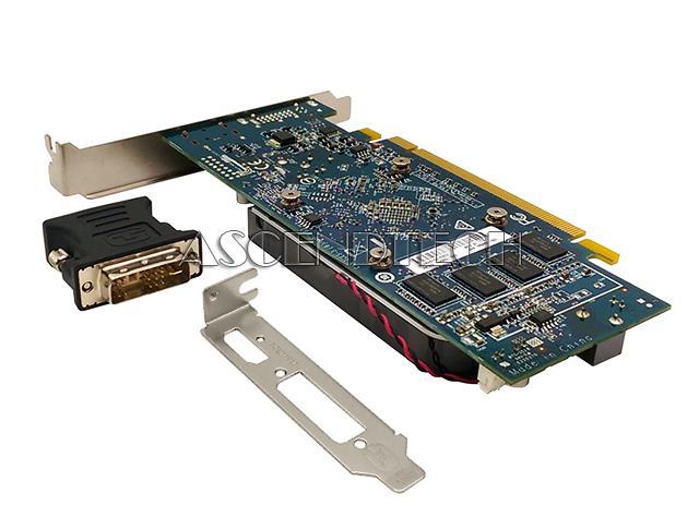 Details about AMD RADEON R7 240 2GB LP FH HDMI DVI VIDEO CARD W/ DVI-TO-VGA  ADAPTER 742920-002